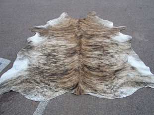 western collectibles-western cowhide 10
