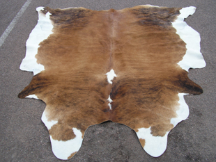 western collectibles-western cowhide 11