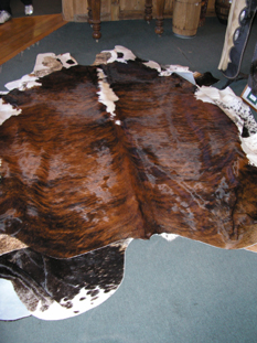 western collectibles-western calf cowhide 28