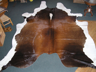 western collectibles-western cowhide 13