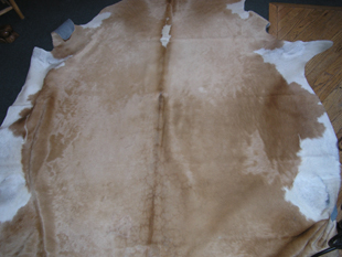 western collectibles-western cowhide 18
